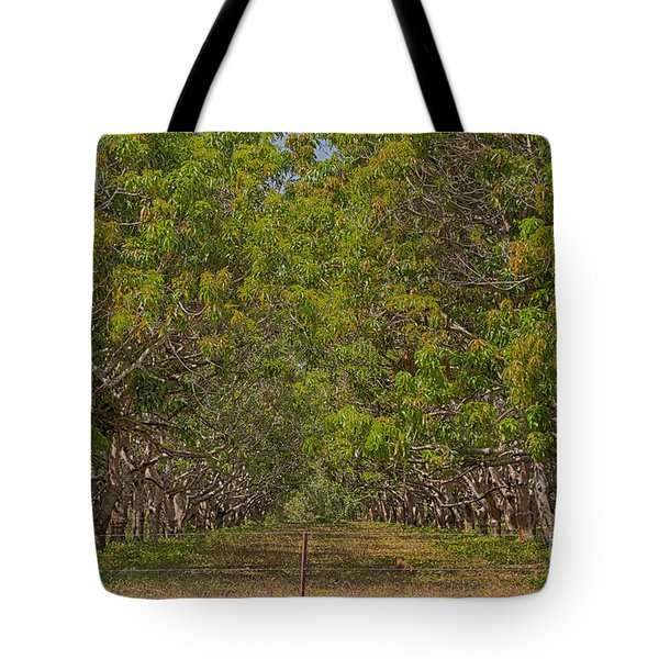 Mango Orchard Tote Bag by Douglas Barnard