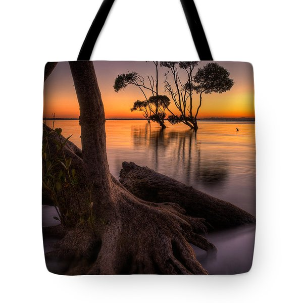 Mangroves Of Beachmere Tote Bag