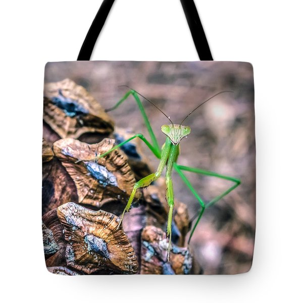 Tote Bag featuring the photograph Mantis On A Pine Cone by Rob Sellers