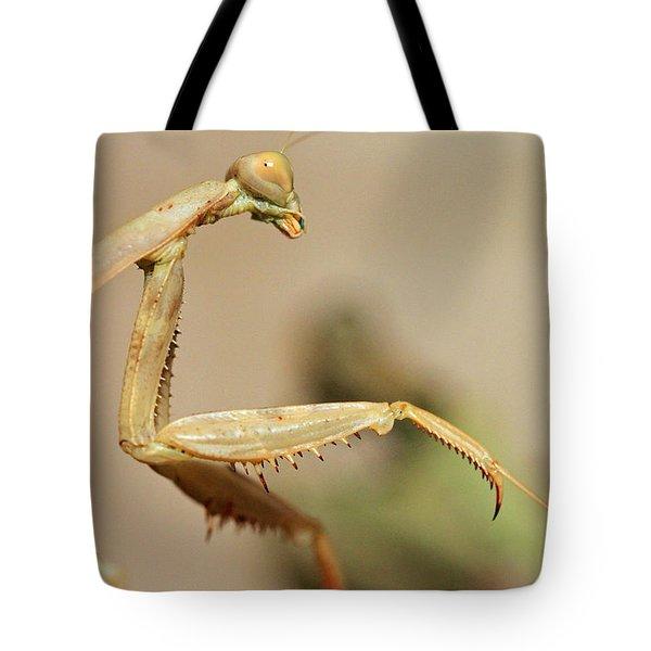 Mantis On The Hunt Tote Bag by Shoal Hollingsworth