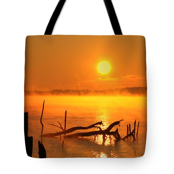 Mantis Sunrise Tote Bag