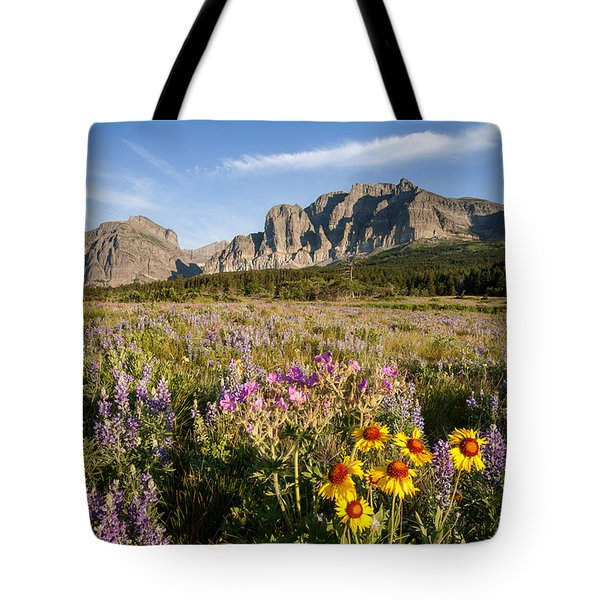 Tote Bag featuring the photograph Many Glacier Spring by Jack Bell