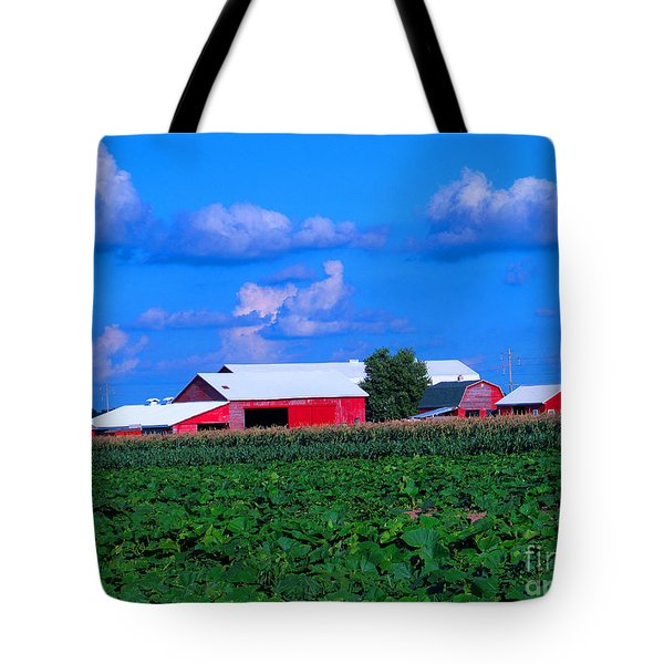 Many Layers Of Sights To Behold Tote Bag by Tina M Wenger