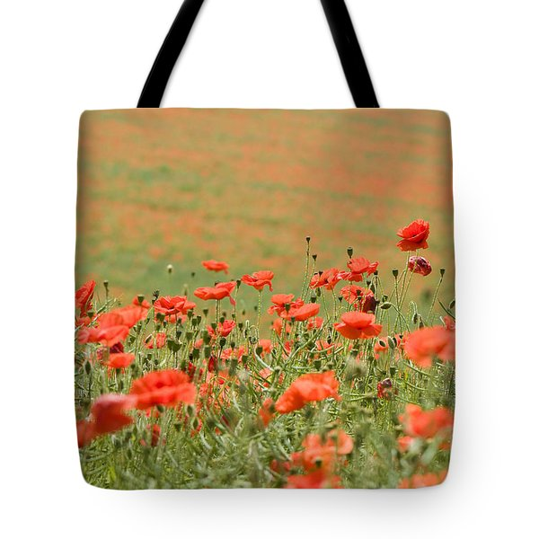 Many Poppies Tote Bag by Anne Gilbert