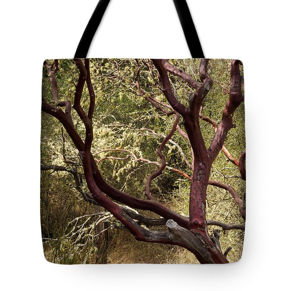 Manzanita Tree Tote Bag