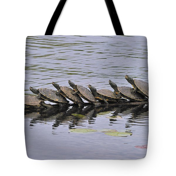Map Turtles Tote Bag by Tony Beck