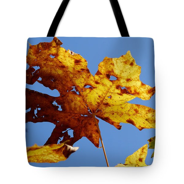 Maple Leaf On A Blue Sky Tote Bag