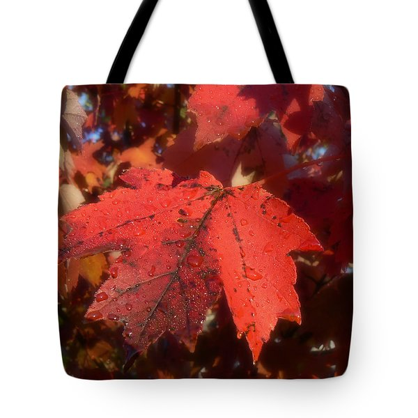 Tote Bag featuring the photograph Maple Leaves In Autumn Red by MM Anderson