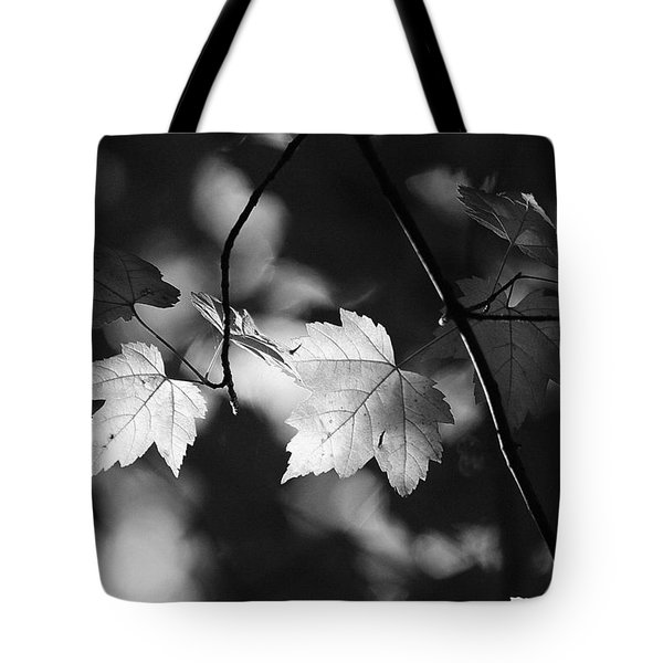 Maple Leaves In Black And White Tote Bag