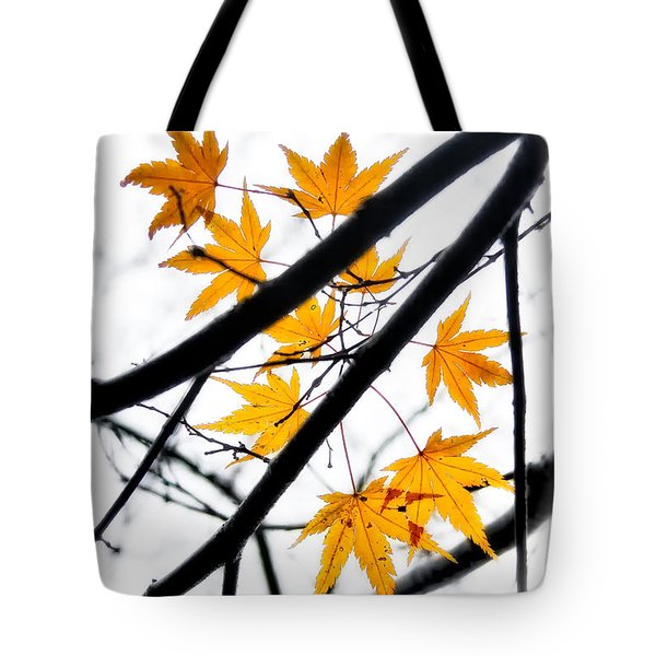Tote Bag featuring the photograph Maple Leaves by Jonathan Nguyen