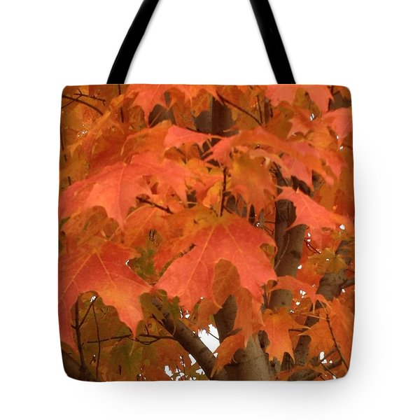 Maple Orange Tote Bag by Pema Hou