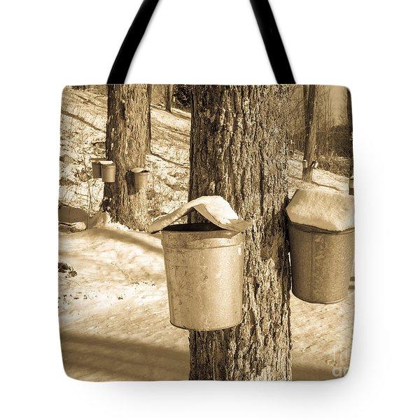 Maple Sap Buckets Tote Bag by Edward Fielding