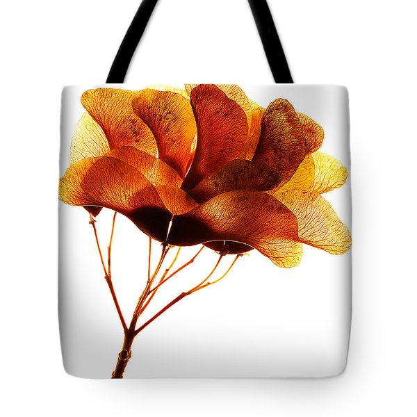 Maple Seed Pod Cluster Tote Bag