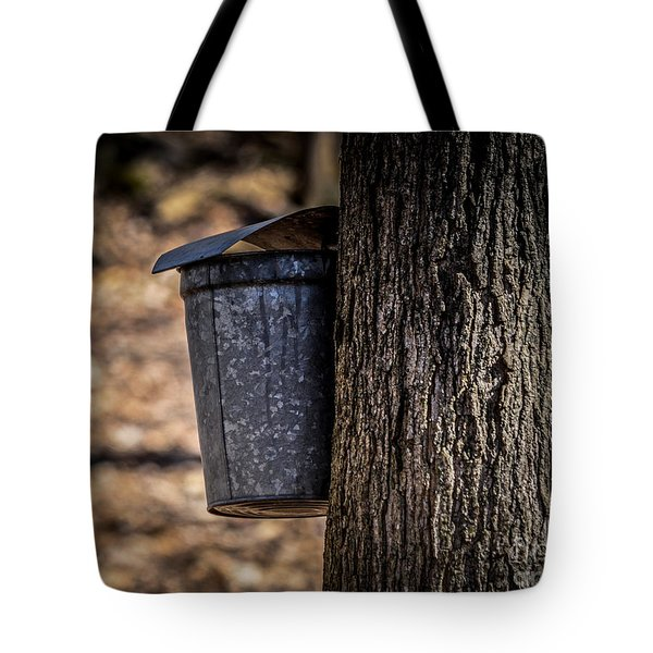 Maple Syrup Time Collecting Sap Tote Bag