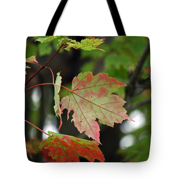 Maple Turning Tote Bag