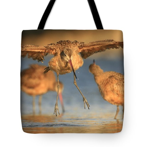 Marbled Godwit  Tote Bag