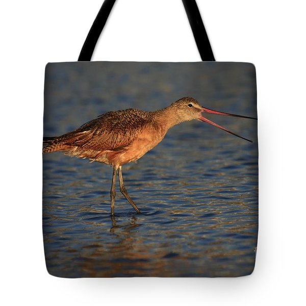 Marbled Godwit Call Tote Bag