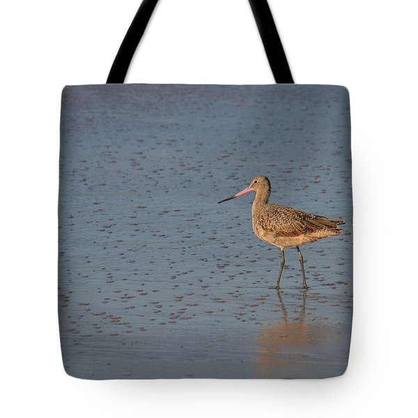 Tote Bag featuring the photograph Marbled Gotwit At Low Tide by Bob and Jan Shriner