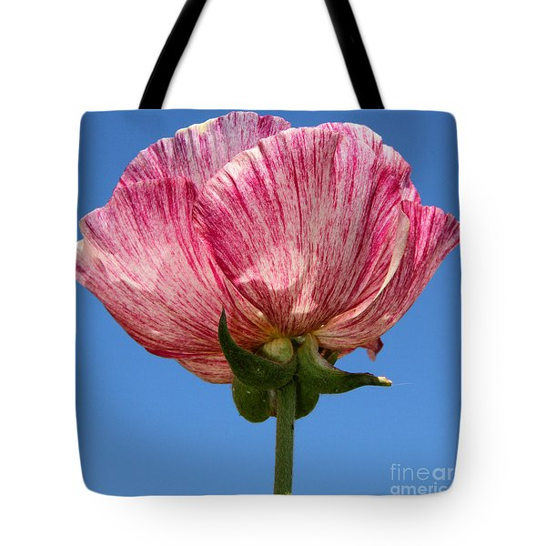 Marbled Mable Ranunculus Flower By Diana Sainz Tote Bag