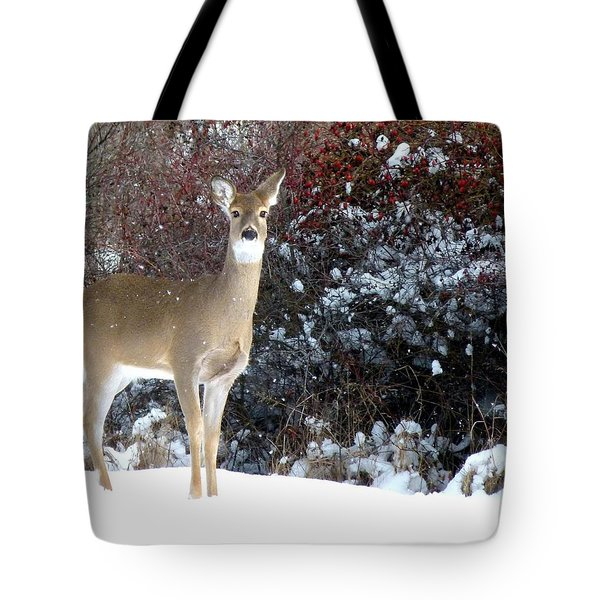 March Snow And A Doe Tote Bag