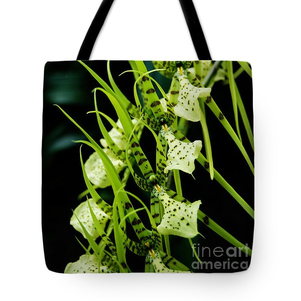 Tote Bag featuring the photograph Marching Orchids by Eva Kaufman
