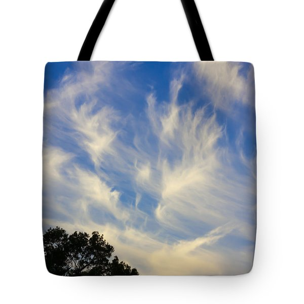 Mare's Tail Tote Bag by John M Bailey