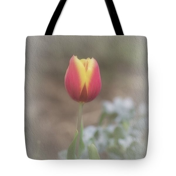 Tote Bag featuring the photograph Maria by Elaine Teague