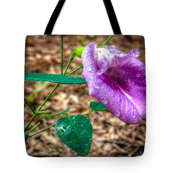 Tote Bag featuring the photograph Mariana by Rob Sellers