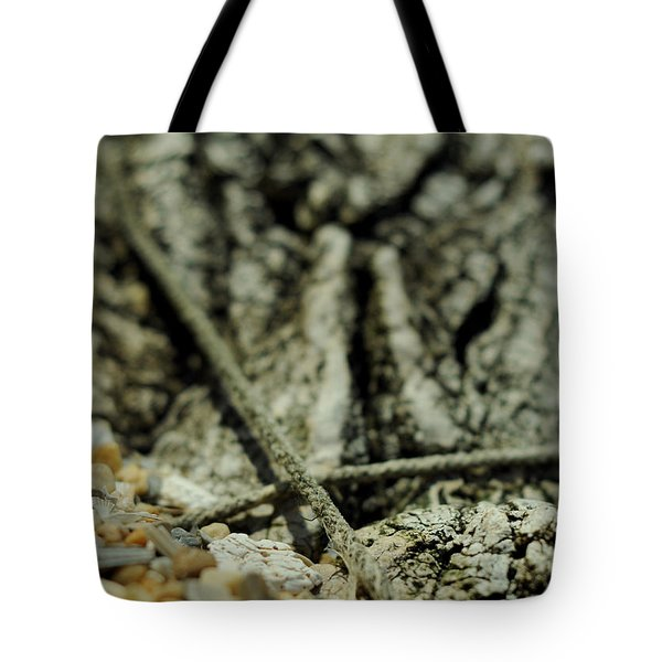 Marks The Spot Tote Bag by Rebecca Sherman