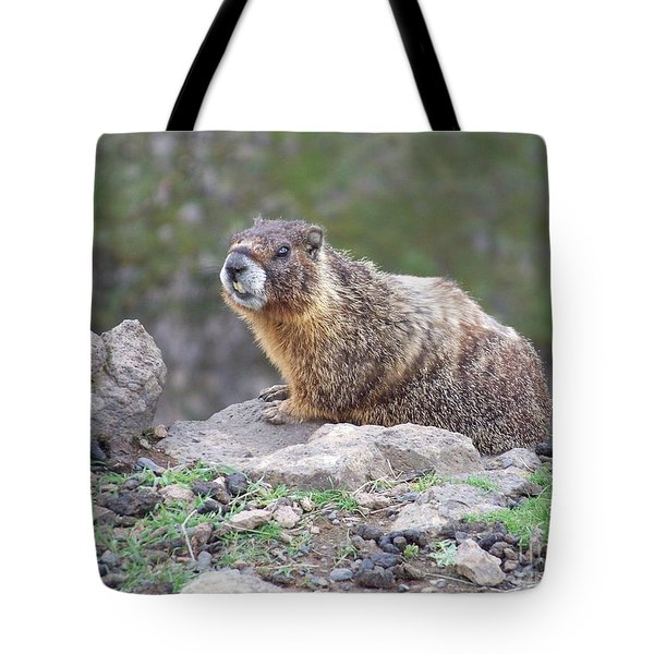 Tote Bag featuring the photograph Marmot On The Edge by Charles Robinson