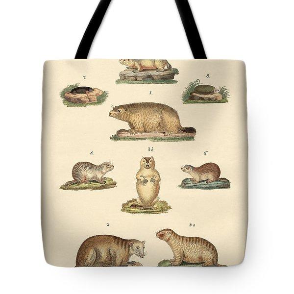 Marmots And Moles Tote Bag by Splendid Art Prints