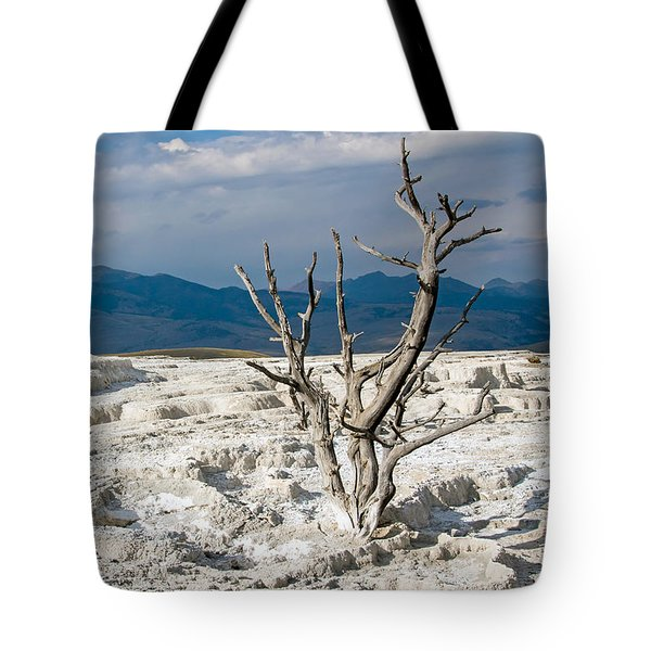 Marooned Tote Bag