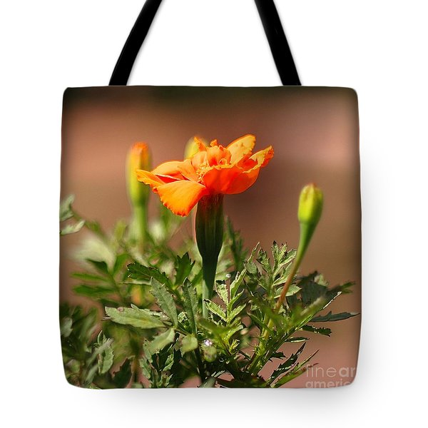 Tote Bag featuring the photograph Mary Reaches For The Sun by Joseph J Stevens