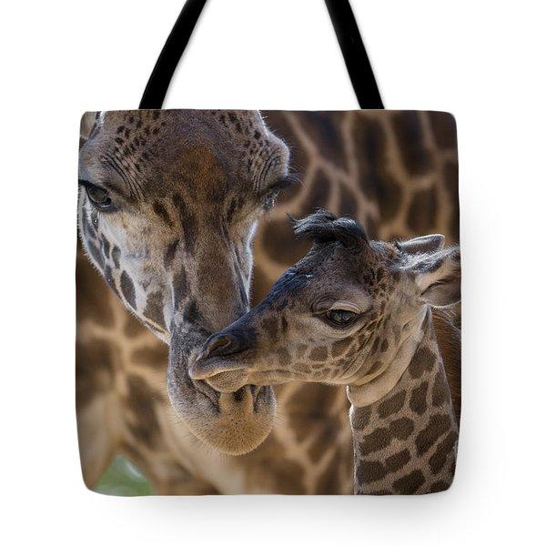 Masai Giraffe And Calf Tote Bag