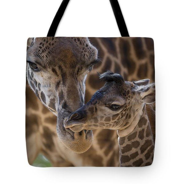 Masai Giraffe And Calf Tote Bag