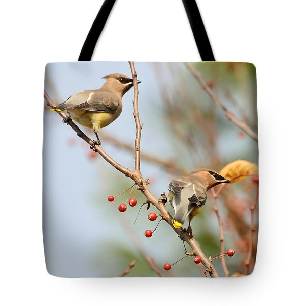 Tote Bag featuring the photograph Masked Duo by Kerri Farley