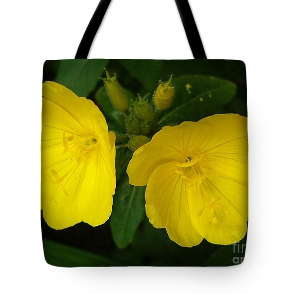 Tote Bag featuring the photograph Matching Pair by Sara  Raber