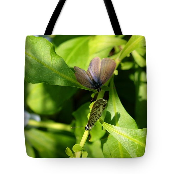 Mating Dance Tote Bag