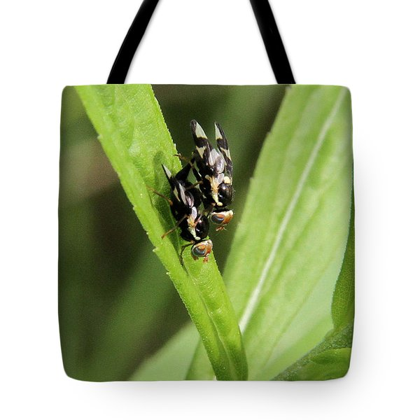 Mating Fruit Flies Tote Bag