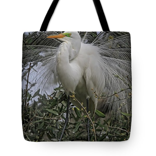 Mating Plumage Tote Bag