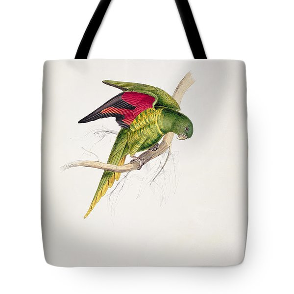 Matons Parakeet Tote Bag by Edward Lear