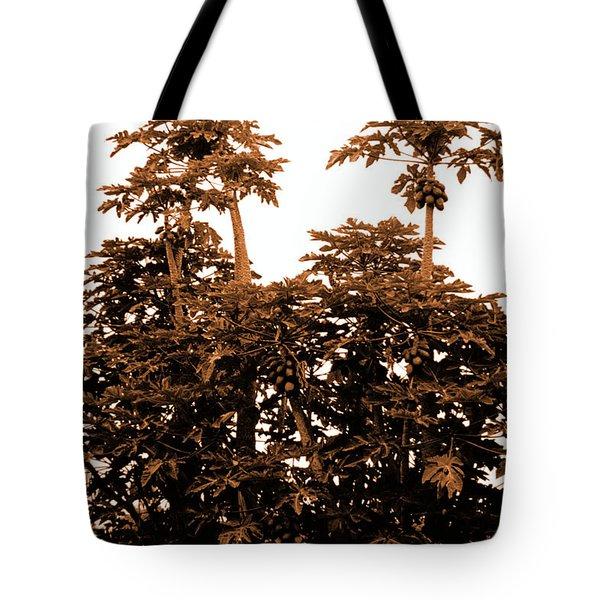 Maui Coconut Palms Tote Bag by J D Owen