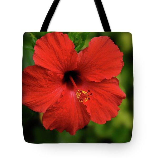 Maui Hibiscus Tote Bag