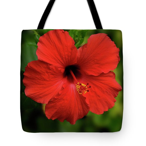 Maui Hibiscus Tote Bag by Arthur Fix