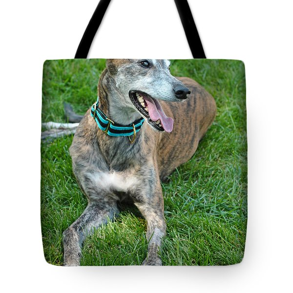 Tote Bag featuring the photograph Maverick by Lisa Phillips