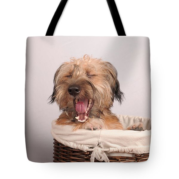 Max 1 Tote Bag