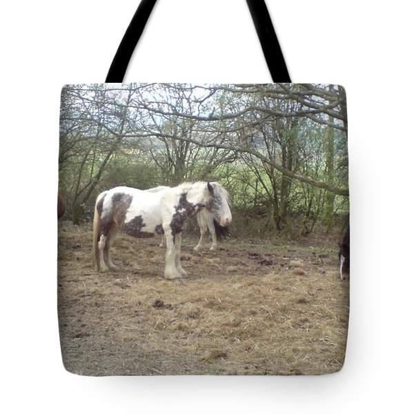 May Hill Ponies 1 Tote Bag by John Williams