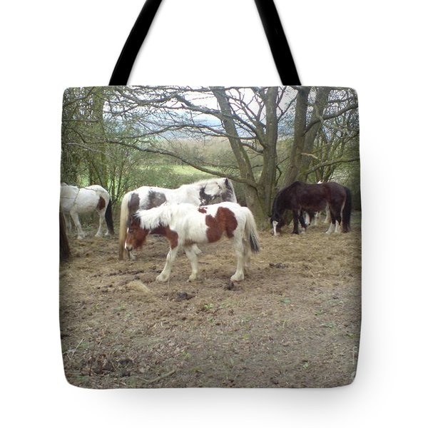 May Hill Ponies 2 Tote Bag by John Williams