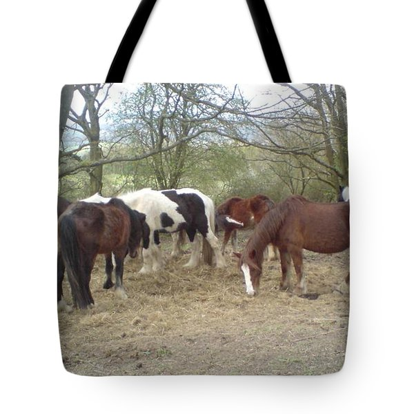 May Hill Ponies 3 Tote Bag by John Williams