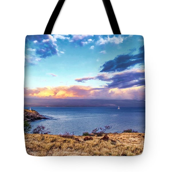 Mcgregor Point 1 Tote Bag by Dawn Eshelman